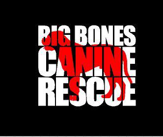 Big Bones Canine Rescue logo as a decal
