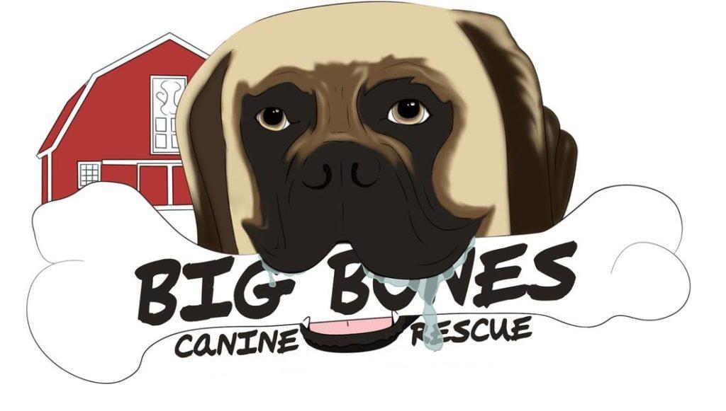 Big Bones Canine Rescue Home